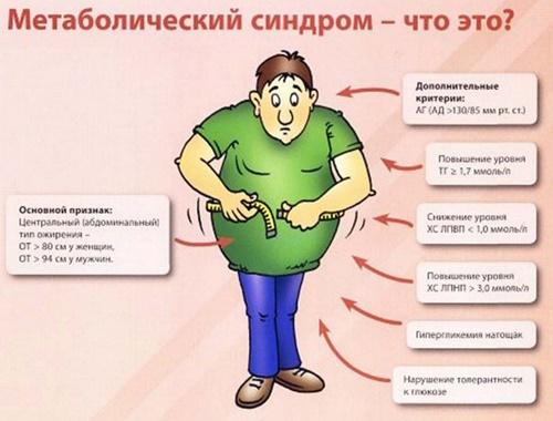 Инсулинорезистентность: Функции инсулина и их нарушения фото