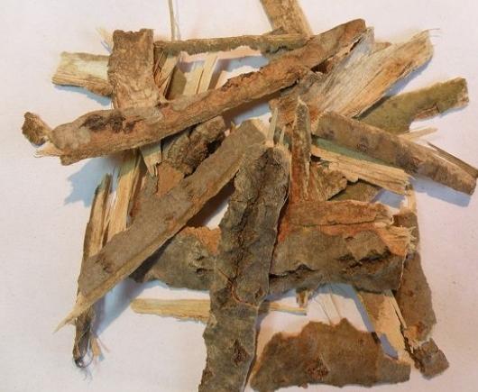 Осиновая кора полезные свойства и применение